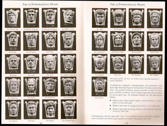 33busts