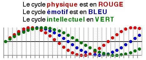 45840_fr_biorythme