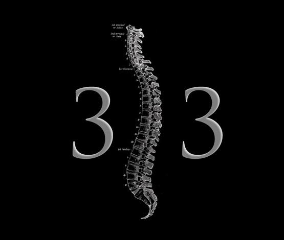 Spine-33